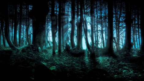 Terrible-dark-forest