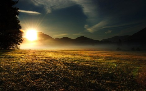 Dawn-1800x2880
